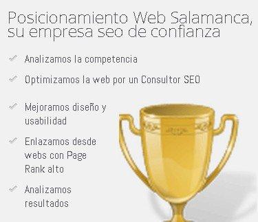 descripcion servicio posicionamiento web